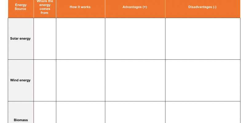 Student workheet